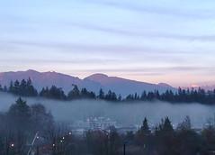 Phantom Fog (Explore) (FernShade) Tags: vancouver vancouverrowingclub coalharbor mist fog scenery scenic mountains sky