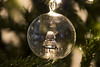 Glass Cage of Emotion (jezbags) Tags: glass cage emotion lego stormtrooper trapped christmas bauble starwars trooper canon 80d canon80d 100mm macro macrophotography macrodreams macrolego legos toy toys
