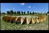 kringloop 01 2017 de roover m (anningahof 2017) (Klaas5) Tags: holland netherlands ©picturebyklaasvermaas beeldentuinanningahof niederlande paysbas nederland exhibition tentoonstelling expo kunst artwork kunstwerk art sculpture sculptuur beeldhouwwerk plastiek beeldentuin sculpturegarden outdoor contemporaryart