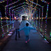 171217-christmas-lights-holidays-festive.jpg