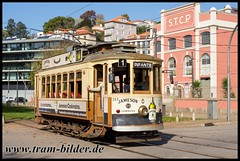 213-2017-10-27-2-Alamenda do Basillio Teles (steffenhege) Tags: porto portugal eléctricos tram tramway strasenbahn streetcar brill stcp 213