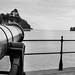 cannon sea dartmouth-0267