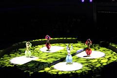 Изображение 099 (Dalekaja) Tags: circus lions new year marry cristmas
