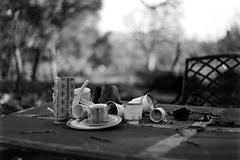 Burnt Tea Set (bac1967) Tags: caffenol caffenolchrs instantcoffee coffee leica leicaiiic summitar summitar5cmf2 leitz leitzwetzlar summitarlens blackandwhitefilm blackandwhite bw monochrome monotone ilford ilfordpanfplus50 ilfordpanf50 rangefinder rangefindercamera 135film 35mmfilm 35mm film vintage atlasfire fire napa napaca napacalifornia california wildfire burnt firedamage firedamaged ash destruction destroyed damage damaged residentialfire 2017 bokeh blur dof depthoffield napacounty tea teaset pottery ceramics china burnedchina patiofurniture patio chair table