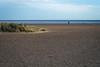 Man and a dog (ihavenowords) Tags: man dog beach shingle sand dune marram grass sea coast great yarmouth norfolk england winter 5 5th january 2018 canon g7x mark mk ii 2 britain uk unitedkingdom walk walking east anglia seaside
