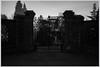M9-1049755 (Giacomo Pagani) Tags: giacomo pagani giacomopagani leica camera ag m9 full frame ccd rangefinder telemetro 2017 voigtlander 35 mm f25 color skopar