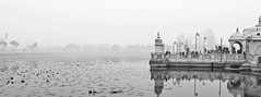The place made me fall in love with B&W again ... so serene and peaceful! (somabiswas) Tags: jalmahal pawapuri bihar rajgir india architecture temple lake saariysqualitypictures sundaylights