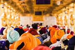 To The Sacred_Sanctum (sukhpal_singh) Tags: faith goldentemple people punjab photosofindia peopleofindia canon vibrant artofvisuals candid emotion unique travel 80d amritsar darbarsahib sikhism sardar religion humanity