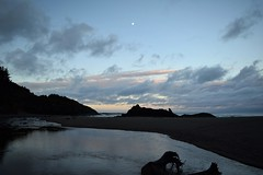 Fogarty Creek at low tide (marensr) Tags: water sea pacific ocean fogarty creek oregon coast sky dawn beach landscape