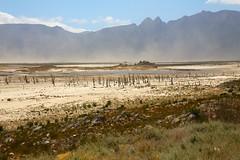 Theewaterskloof Dam (peet-astn) Tags: theewaterskloof dam theewaterskloofdam franschhoek westerncape drought globalwarming dust