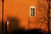 Fake (lauttone1) Tags: salerno sa italia ita italy campania south sud meridione shadows ombre tree trees albero alberi reflection riflesso riflessi streetphotography sunset canon eos 1d mark iii