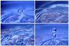 Panel of Progression of a Waterdrop (Golden Wheels) Tags: abstract artistic backdrop backdrops background backgrounds blue cover design drop freshwater graphic illustration liquid presentation rain raindrop raindrops report ripple splash splashwater template wallpaper water waterdrop watersplash waterdrops