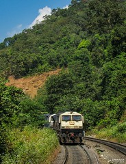 Humming EMDs (mohammedali47) Tags: emd indianrailways gt46mac braganzaghats locomotive railroad forest