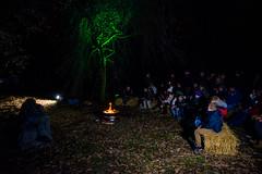 20141221-Kerst-Julianapark-ap-roukema_IHI7990 (kerstinhetjulianapark) Tags: kerstinhetjulianapark julianapark utrecht zuilen kerst