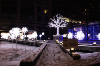 Holiday Tree in Yorkville