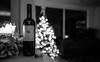 Aus und vorbei für dieses Jahr... (ラルフ - Ralf RKLFoto) Tags: christmas weihnachten weihnachtsbaum wein 5diii bw sw bottle 2435 sigma love