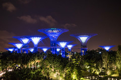 Supertree Groves Singapore