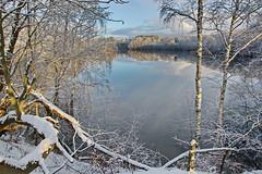 Am See (garzer06) Tags: wolken deutschland schneelandschaft landschaftsfoto spiegelung landschaftsbild mecklenburgvorpommern landscapephotography inselrügen vorpommernrügen insel vorpommern rügen landschaftsfotografie