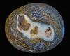 P1023120e1 (David W Geddes) Tags: geode agate
