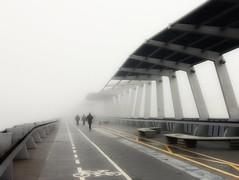 Lost in the fog. (Fencejo) Tags: canon600dt3ikissx5 tamronspaf1750mmf28xrdiiild streetphotography zaragoza river ebro fog bridge