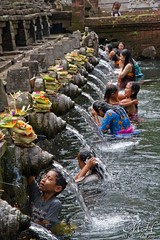Purta Tirta Empul Temple, Bali (M_Hauss) Tags: indonesien indonesia asia asien bali ubud people personen temple water blessing