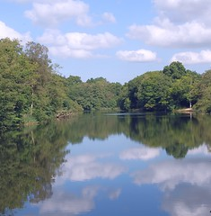 Reflecting on the Beauty of the Forest of Dean (antonychammond) Tags: forestofdean gloucestershire england riverwye ancientwoodlands forest water reflections lake sky trees thegalaxy contactgroups scenicsnotjustlandscapes saariysqualitypictures cloudscapes reflectyourworld