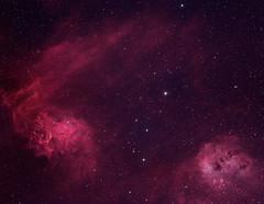 The Flaming Star Nebula and Tadpole Nebula (Bicolor Narrowband - Ha+OIII) (Alessio Beltrame) Tags: astroimaging astronomy astrophotography auriga bicolor cosmos deepsky flaming flamingstar flamingstarnebula fsq85edx halpha ic405 ic410 narrowband nebula oiii photoshop pixinsight qhy163m qhyccd sky space star stars tadpole tadpolenebula takahashi astrometrydotnet:id=nova2384086 astrometrydotnet:status=solved