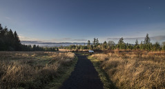 (retsoced) Tags: coopermtn beaverton oregon naturepark trails pacificnw