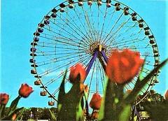 Riesenrad im damaligen Kulturpark Plänterwald in Ost-Berlin Treptow der DDR (SchlangenTiger) Tags: ostberlin treptow berlin pländerwald kulturpark gdr jugend kinder ddr