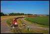DB Cargo 6435, Moerdijk 14-06-2017 (Henk Zwoferink) Tags: moerdijk noordbrabant nederland nl 6435 db cargo henk zwoferink 6400 mak