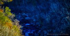 Fall Foliage at Little River Canyon - Fort Payne, AL (2017) (Marcie Braden) Tags: littlerivercanyon fortpayneal litteriverfalls