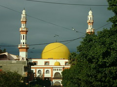 DSC02144 (Amelia Ham) Tags: sky maghreb algeria africa afrika mosque architecture yellow religion birds city algiers