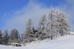col des Planches (bulbocode909) Tags: valais suisse coldesplanches montchemin montagnes nature paysages arbres mélèzes chalets givre neige automne forêts bleu nuages brume stratus