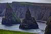 Duncansby Stacks (scuthography) Tags: duncansbystacks landscape johnogroats scotland scotish northsea bird birds green water mountain scuthography