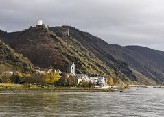 Castle With a View (trainmann1) Tags: nikon d7200 nikkor 18200mm amateur handheld germany europe honeymoon fall november 2017 vikingrivercruise rivercruise rhine rhineriver river water scenic beautiful beauty bold vibrant colorful castle mountain hill hillside town trees