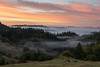 Top of the Morning (Bob Bowman Photography) Tags: sunrise fog landscape redwoods oaks trees hills mist forest tree sky color rocks grass clouds california sonomacounty morning
