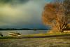 Avant l'Orage (40) (GerardMarsol) Tags: aquitaine arbres bateau bois ciel cabanes sud eau étangs été france feuilles mimizan landes lac lumières lumière nuages nature orage paysage pins ombres reflets soleil soir steeulalieenborn temps village