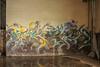 Fusia, Roach (NJphotograffer) Tags: graffiti graff new jersey nj abandoned building fusia roach pfe crew