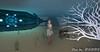 Atlantis (6) (Poppys_Second_Life) Tags: 2l atlantis picsbyⓟⓞⓟⓟⓨ popi popisadventuresin2l popikone popikonesadventuresin2l poppy sl secondlife underthesea underwater virtualphotography nautilus sumbmersible submarine