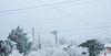 _DSC1316 (kanokwalee) Tags: bigbend westtexas winter 2017 christmas newyear