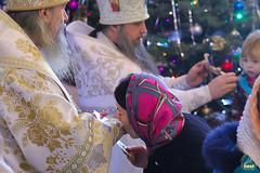 29. Собор Пресвятой Богородицы в Богородичном 08.01.2018