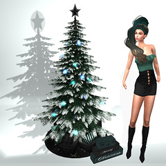 LuceMia - The Darkness Monthly Event (MISS V♛ ITALY 2015 ♛ 4th runner up MVW 2015) Tags: thedarknessmonthlyevent giuliadesign sl new fashion tree christmas gacha hair nyne creations mesh colors hud models lucemia