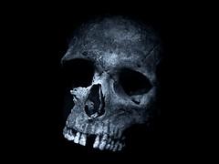 Skull Display (Robert Cowlishaw (Mertonian)) Tags: blackandwhite bw time exploring middleages viking dark canonpowershotg1xmarkii markiii g1x powershot canon vikingskull history robertcowlishaw mertonian bones skull
