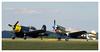 Vought F4U Corsair & Curtiss  P-40N-5-CU Warhawk s/n 42-15915 (Aerofossile2012) Tags: vought f4u corsair avion aircraft aviation laferté ww2 wwii warbird fighter curtiss p40 warhawk