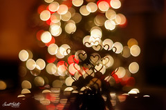 Fun with Bokeh! (Scott Stults) Tags: canon eos rebel t6i ef50mm f18 stm aperture priority christmas bokeh gold bell multiply