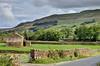 Swaledale, Yorkshire Dales (Baz Richardson (trying to catch up again!)) Tags: northyorkshire yorkshiredales swaledale drystonewalls stonebarns farmland