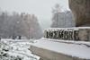 Dicembre - December. (sinetempore) Tags: dicembre december torino turin neve snow freddo cold ghiaccio ice fontanadeidodicimesi parcodelvalentino