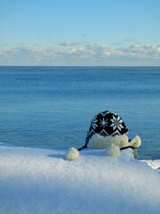 Blue and white weekend (mrsparr) Tags: hat lakeontario lake blue blueandwhite theflickrlounge saturdaytheme rock boulder snow landscape sky water ourdailytopic smileonsaturday hatsandco toronto