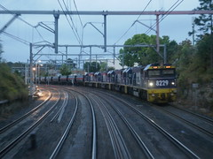 82s in motion (sth475) Tags: railway railroad 鉄道 train freight diesel loco locomotive 機関車 coal 82class clyde emd gm jt42c 8229 8244 track line ontheline gosford shortnorth centralcoast nsw australia spring goldenhour early morning