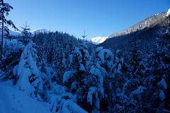 _DSC4501 (farix.) Tags: kasprowy tatry tatras tatryzachodnie skitour skitury snow skitur śnieg gąsienicowa zakopane narty kuźnice